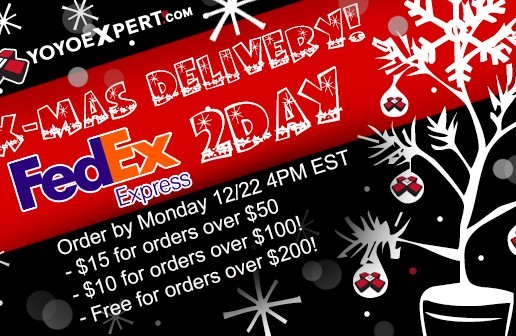 FedEx 2Day Shipping for Christmas Delivery!