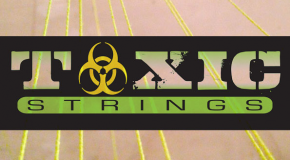 Toxic Strings Restock!