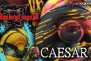 New MonkeyfingeR CAESAR Release & Accessories Restock!