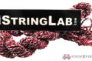 Huge String Lab Restock! Type X, AMMO, & Inverse!