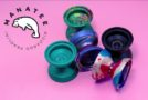 New CLYW Manatee Release!